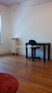 Northeastern/symphony Amazing Studio 1 Bath Boston - $1,750
